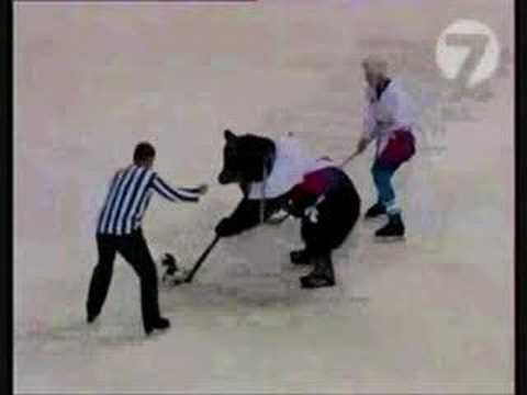 bears-hockey