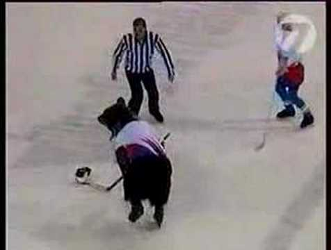 Video thumbnail for youtube video Bears Playing Hockey