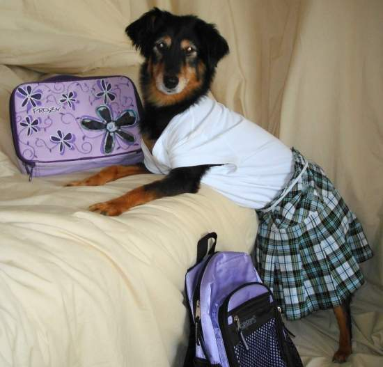 creepy-dog-calender