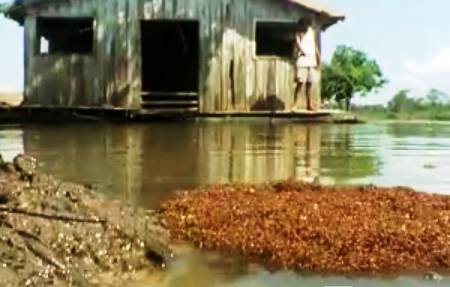 ant-raft