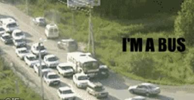im-a-bus