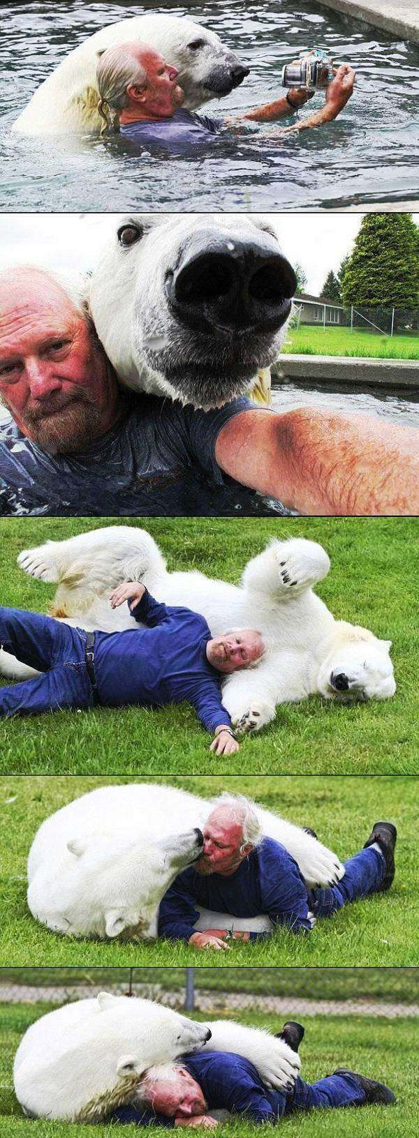 The Benefits Of Being A Polar Bear Zookeeper