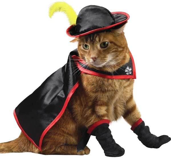 kitty-crusader-costume