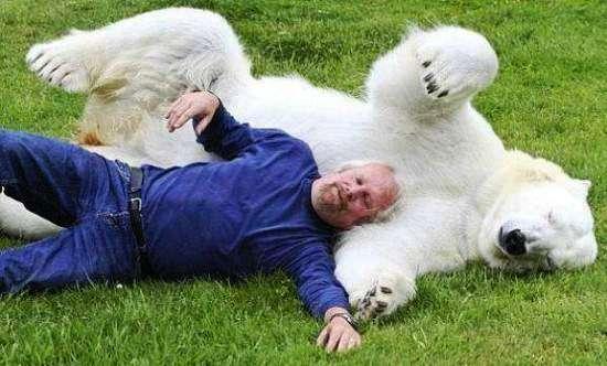 polar-bear-zookeeper