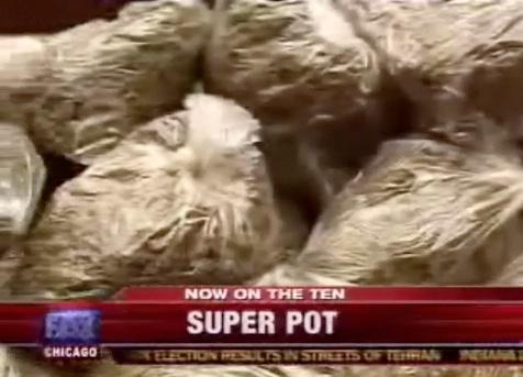 Beware Of SUPER POT!
