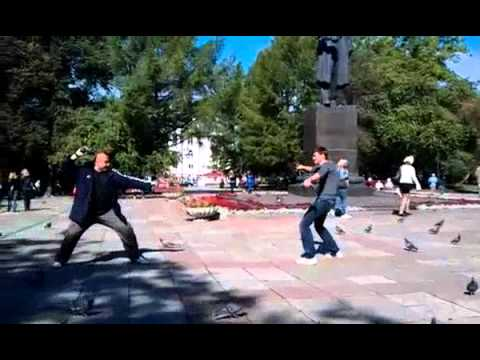 Pigeon Fight