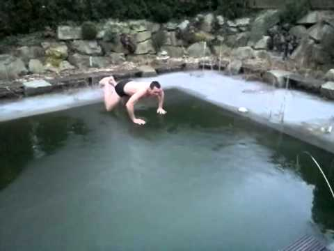 Jumping Into A Frozen Pool — Genius