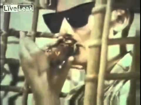 Hilarious 1970′s Anti-Marijuana PSA