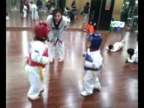 Five Year Olds Taekwondo Fight