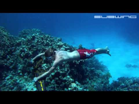 The Underwater Subwing