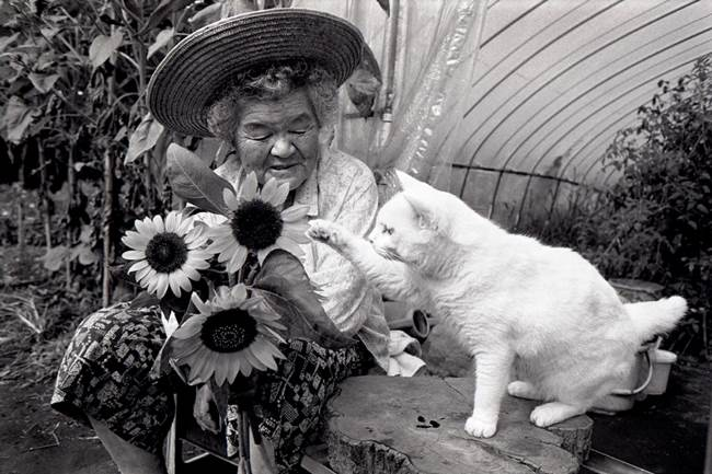 Grandmother and Cat Picture