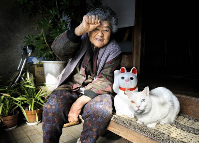 Grandmother and Cat Photograph Sitting