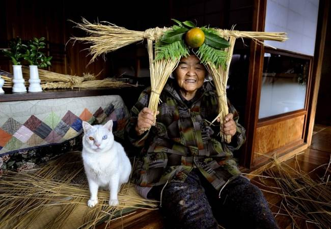 Grandmother and Cat Photograph