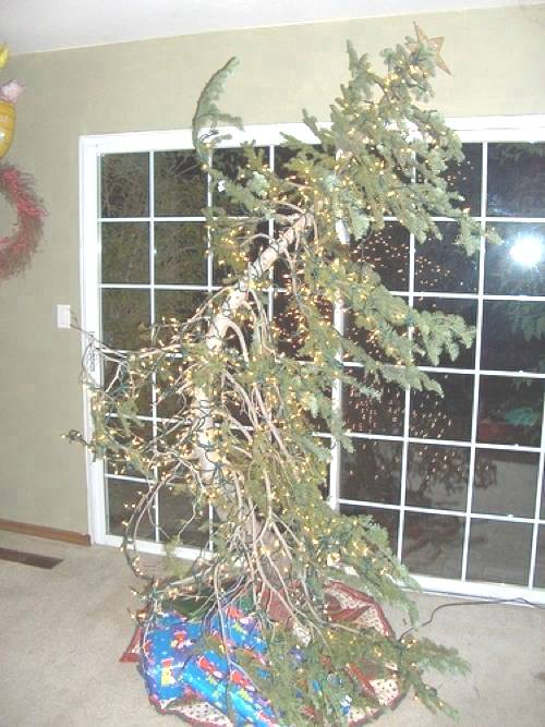 Ugly Christmas Tree Photo