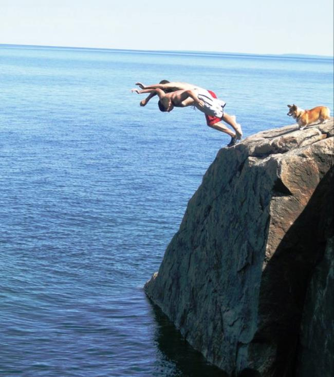 adventure-corgi-cliff-diving