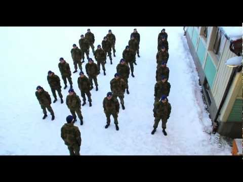 Harlem Shake, Norwegian Army Edition