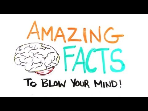 Amazing Mindblowing Facts