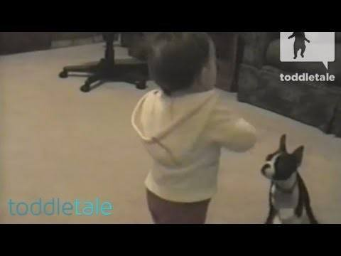 Video thumbnail for youtube video Babies First Steps Interrupted By Dog Poop – PBH2