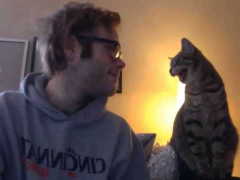 Video thumbnail for youtube video Cat Bonding