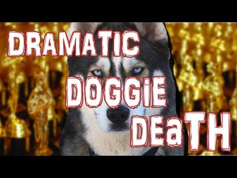 Video thumbnail for youtube video Dramatic Doggie Death