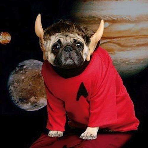Pug Costumes Spock