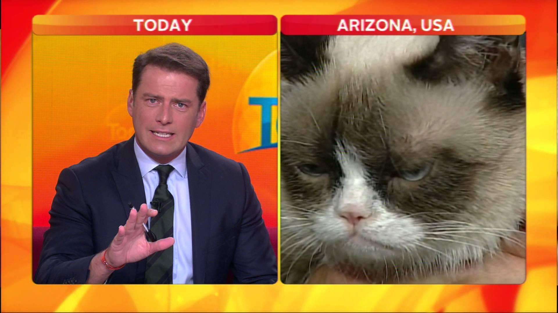 Australian Anchor Loses It On Grumpy Cat