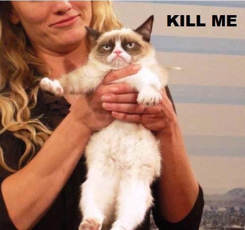 Grumpy Cat Being Held