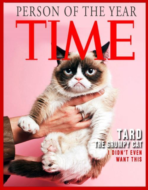 Grumpy Cat Person Of The Year