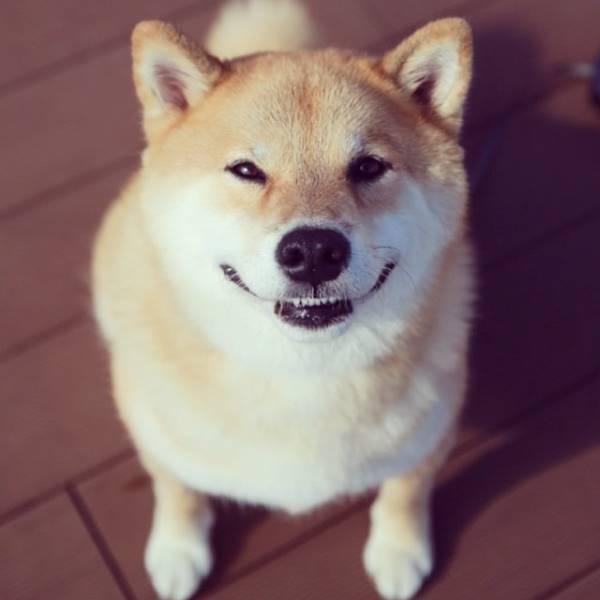 Smiling Maru