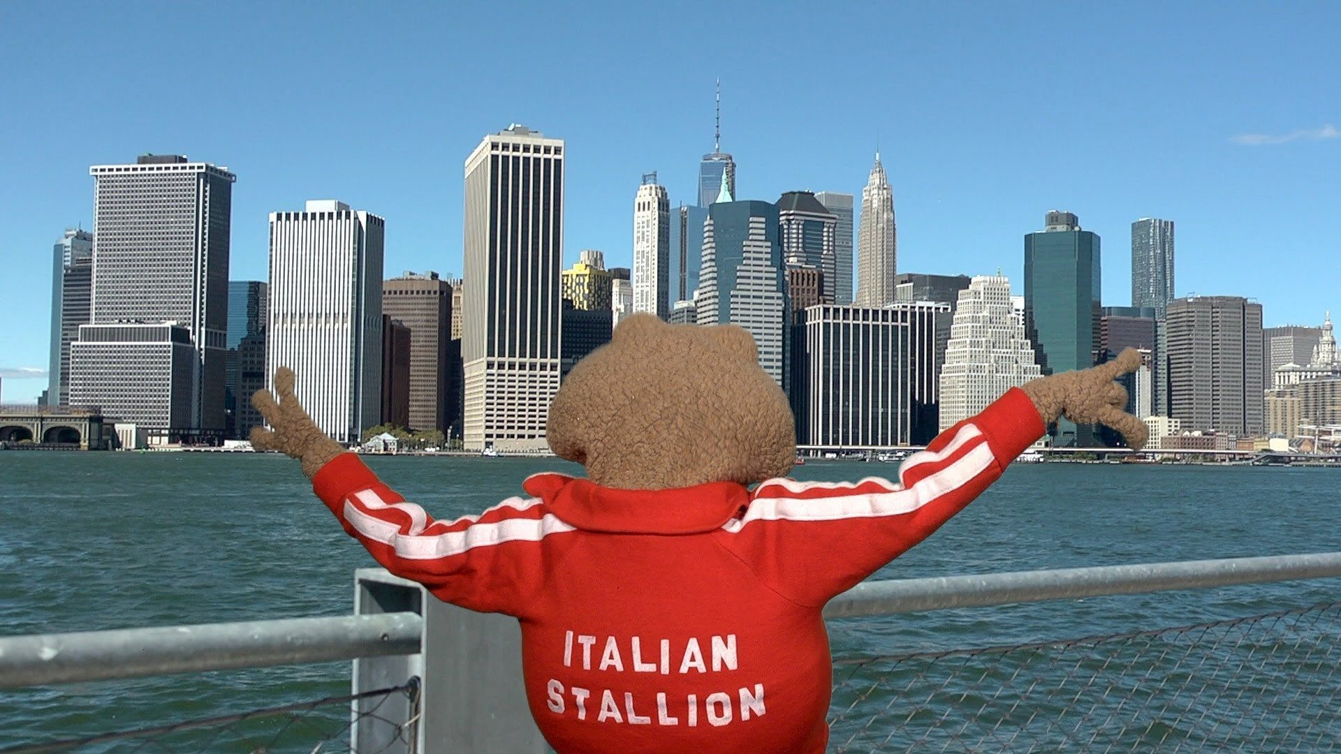Johnny T's New York City Tourist Tips