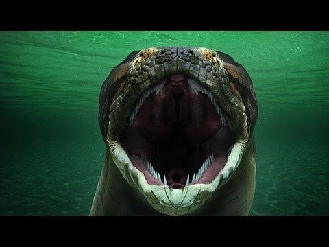The Titanoboa Is What Nightmares Are Made Of