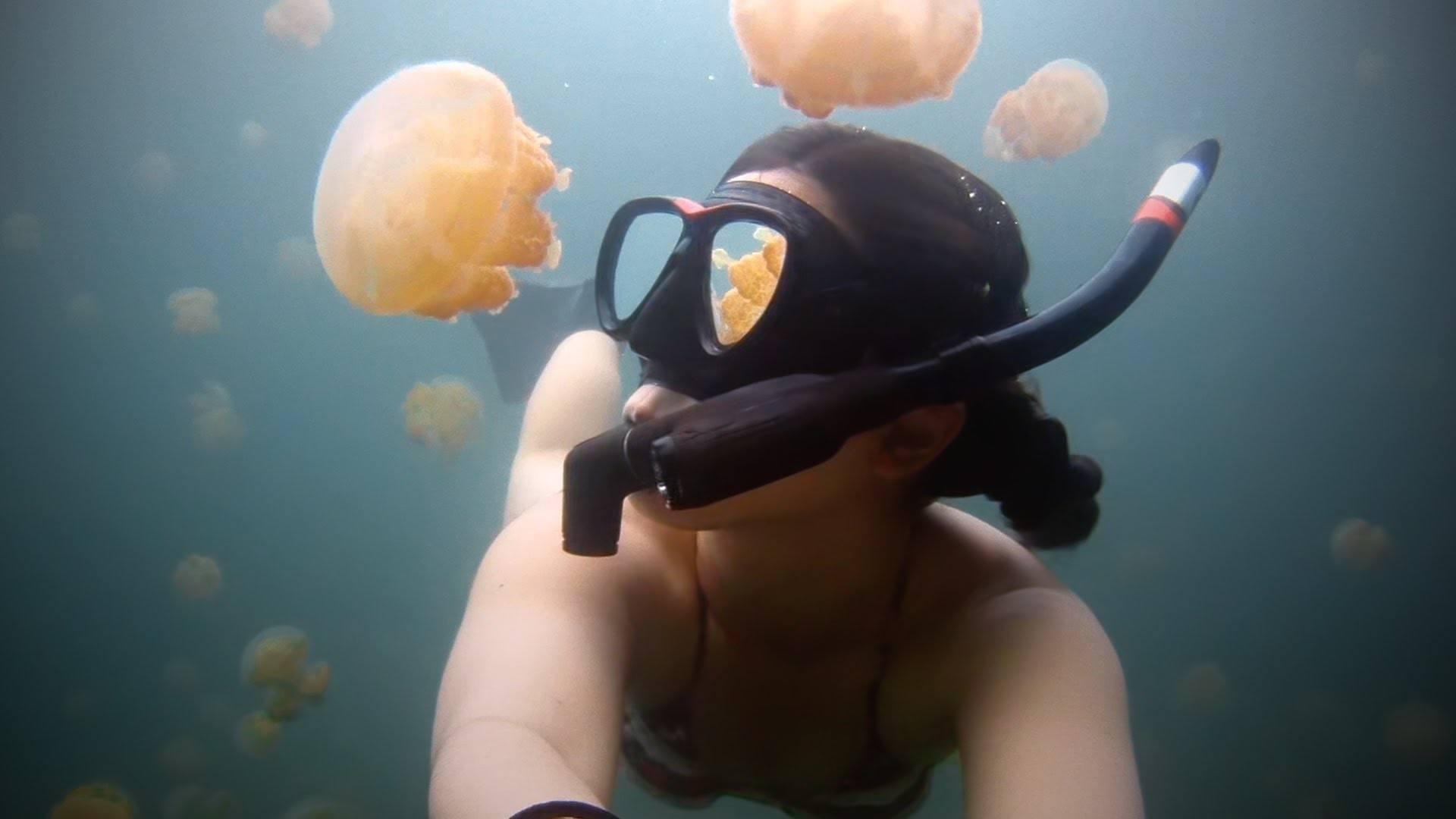 Unspeakably Beautiful: Swimming In Jellyfish Lake