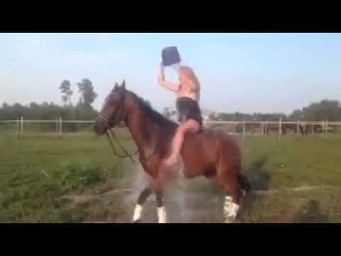 Why You Should Never Do The Ice Bucket Challenge On Top Of A Horse