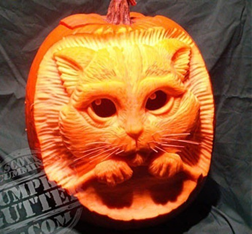pumpkin-carvings-cat