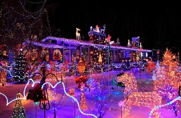 crazy-christmas-decorations-horse