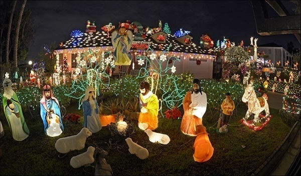 crazy-christmas-decorations-lamb